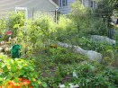 Maybrooke House—Vegetable Garden