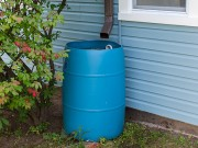 829 South Winton—Rain Barrel